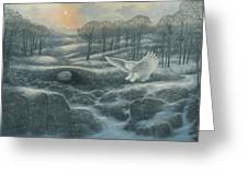 Winter Landscape With Owl Greeting Card by Marte Thompson