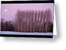 Winter Moon Greeting Card