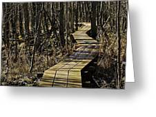 Winter On Miller Pond Board Walk Greeting Card