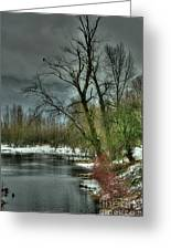 Winter On The Nicomen Slough Greeting Card