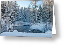 Winter On The Truckee River Greeting Card