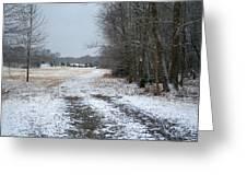 Winter Pasture Greeting Card