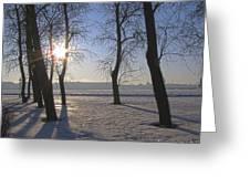 winter Peterburg Russia  Greeting Card