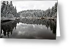 Winter Reflection Greeting Card