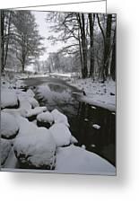 Winter Scene Of Creek With Snow-covered Greeting Card
