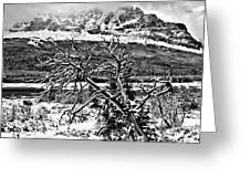 Winter Sets In Greeting Card