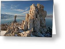 Winter Shoreline Mono Lake Greeting Card
