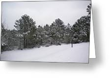 Winter Slope Greeting Card