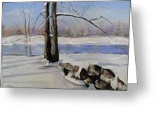 Winter Solace Greeting Card by Cindy Plutnicki