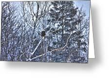 Winter Storm Alert Greeting Card