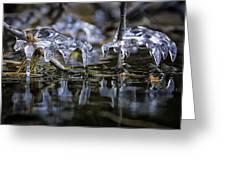 Winter Water Greeting Card