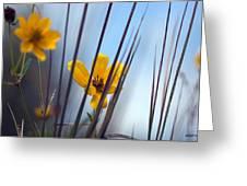 Winter Wildflowers Greeting Card