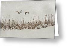 Winter Wings Greeting Card