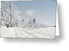 Winters Beauty Greeting Card