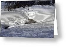Winter's Satin Blanket Greeting Card