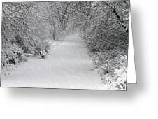 Winter's Trail Greeting Card