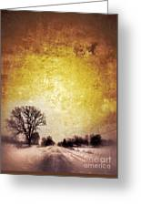Wintery Road Sunrise Greeting Card