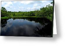 Wisconsin's Potato Rapids River Greeting Card