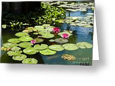 Wishes Among The Water Lilies Greeting Card by Methune Hively