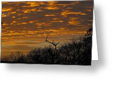 Wispy Sunset Clouds Greeting Card by Rebecca Cearley