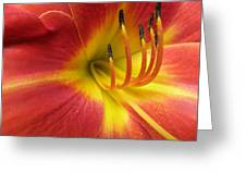 With Great Detail Greeting Card