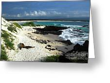 Wizard Hill Beach Greeting Card
