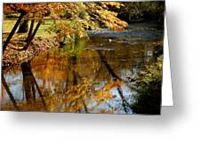 Wolcott River Reflections Greeting Card