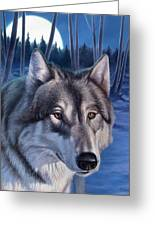 Wolf In Moonlight Greeting Card