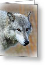 Wolf Profile Greeting Card