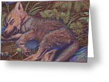 Wolf Pup Napping Greeting Card by Thomas Maynard