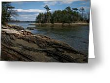Wolfs Neck State Park Greeting Card