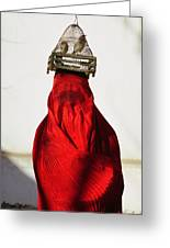 Woman Draped In Red Chadri Carries Greeting Card by Thomas J Abercrombie