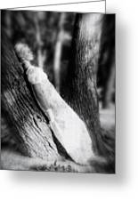 Woman On A Trunk Greeting Card by Joana Kruse