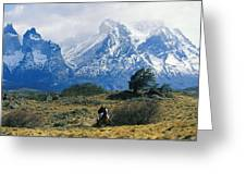 Woman Riding Horseback, Torres Del Greeting Card