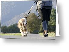Woman Walking With Her Dog Greeting Card