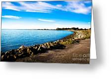 Wonders At Seaside Greeting Card