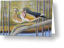 Wood Duck Pair At The Lake Greeting Card