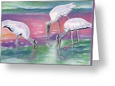 Wood Stork Family At Sunset Greeting Card