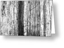 Wood Texture Greeting Card