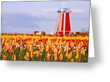 Woodburn, Oregon, United States Of Greeting Card