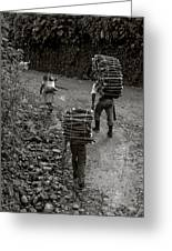 Woodcarriers In Guatemala Greeting Card
