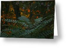 Wooded Dream  Greeting Card