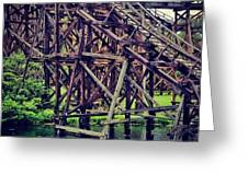 Wooded #rollercoaster At #cedarpoint In Greeting Card by Pete Michaud