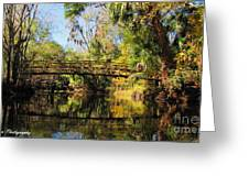 Wooden Bridge Over The Hillsborough River Greeting Card