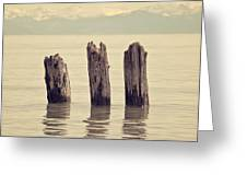 Wooden Piles Greeting Card