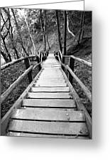 Wooden Stairs Greeting Card by Falko Follert