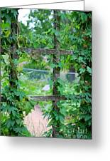 Wooden Trellis And Vines Greeting Card