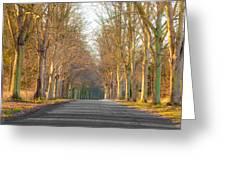 Woodland Greeting Card