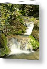Woodland Waterfall Greeting Card by Victoria Hillman