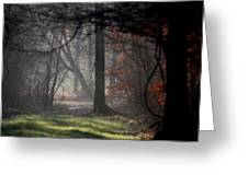 Woods - Dirt Road Photo - The Quiet Place Greeting Card